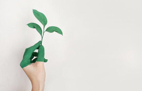 SOStenibilitat